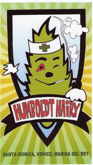 Haircut Harry