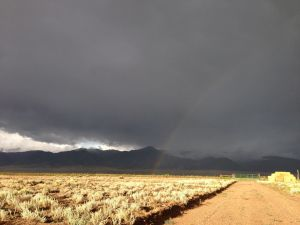 post rain.2