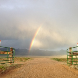 RC gates with rainbow